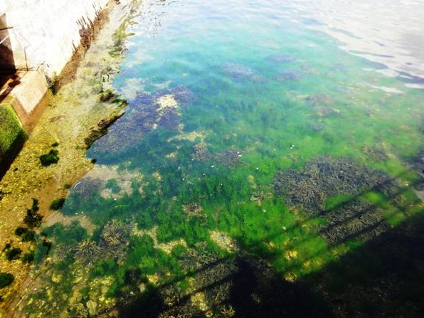 カリラ蒸留所側の海岸